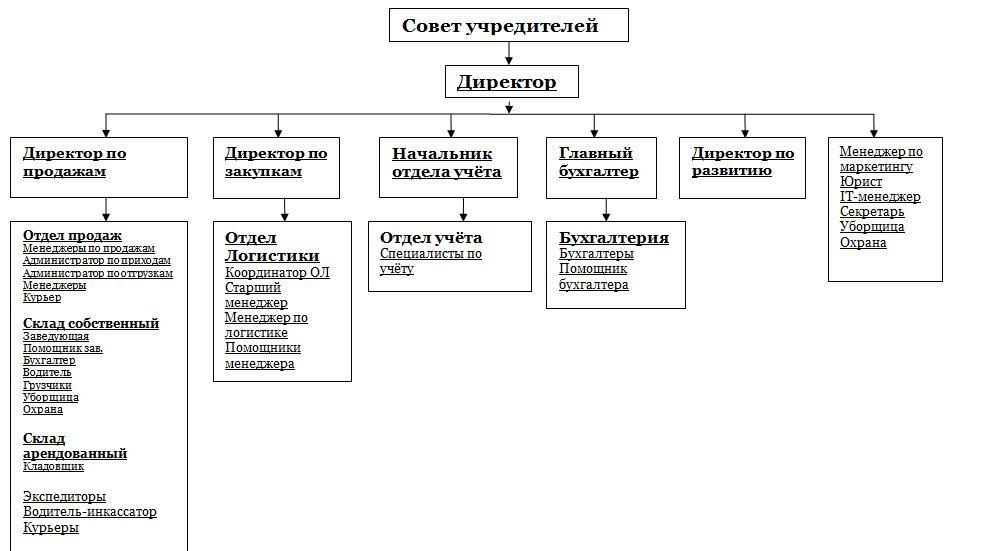 Пример организационной